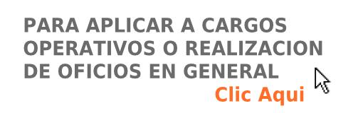 CARGOS OPERATIVOS U OFICIOS EN GENERAL