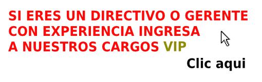 BUSCA CARGOS DIRECTIVOS